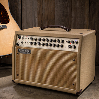 Mesa Boogie Rosette 2x8 Acoustic Combo